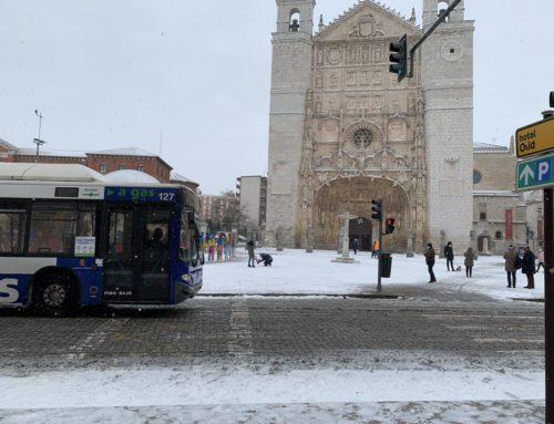 Anticipación, planificación y coordinación han sido claves para la eficacia del operativo del Ayuntamiento de Valladolid ante el temporal