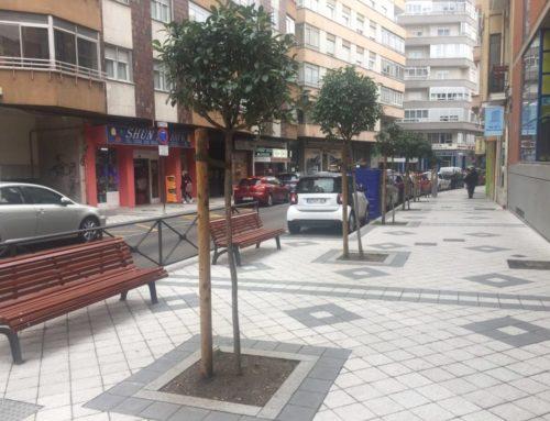"""Los vecinos de la calle Panaderos tendrán la posibilidad de """"apadrinar"""" un espacio para los árboles y plantas"""